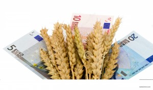 http://www.dreamstime.com/royalty-free-stock-photo-wheat-ripe-harvest-ears-euro-cash-banknote-white-image29009335